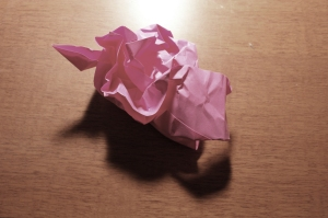 Fall 2009 - pink paper
