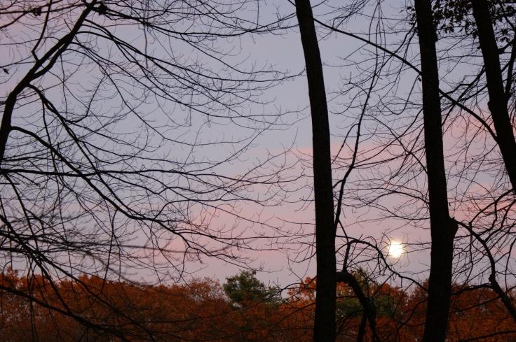 Moonrise November 1 2009